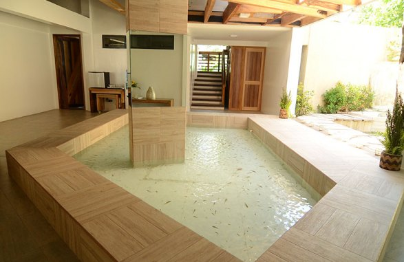 Fish Spa Room