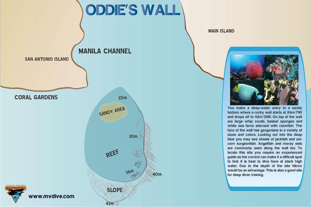 ODDIES-WALL