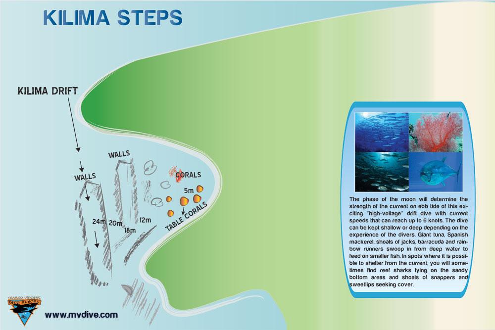 kilima-steps