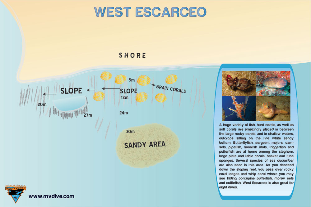 west-escarceo